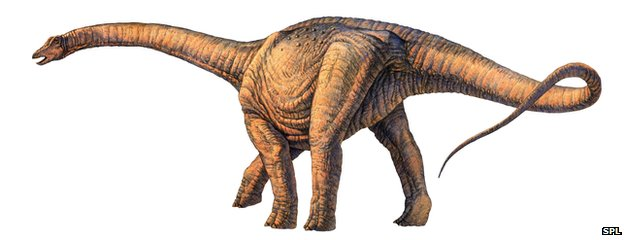 _74905252_e4460505-argentinosaurus_dinosaur-spl